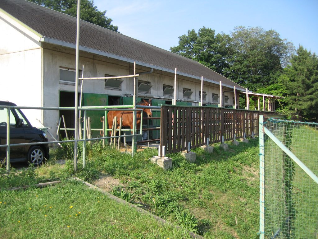 京田辺キャンパス内の馬術部の厩舎